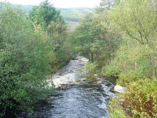 Photograph of Scottish Natural Heritage Highlights Funding Opportunities For Land Managers