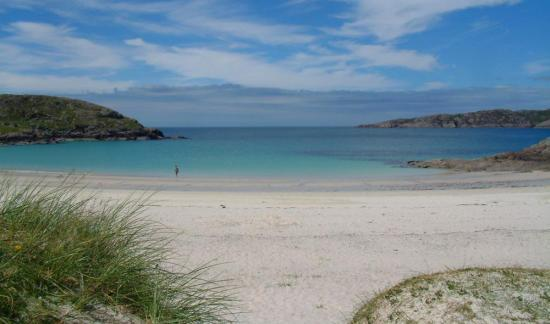 Photograph of Highland beaches meet strict environmental water quality standards